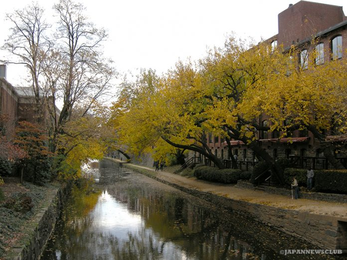 <!--:en-->Fall Colours in Washington D.C. Area<!--:--><!--:ja-->ワシントンDC方面の紅葉<!--:--> 2