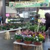 Detroit Markets ~ Eastern Marketデトロイトの市場 ~ Eastern Market 4
