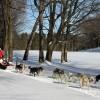 寒いミシガンにはウィンタースポーツ、冬のリゾートの歴史がある 8