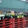 デトロイトの市場 ~ Eastern Marketデトロイトの市場 ~ Eastern Market 1