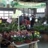 デトロイトの市場 ~ Eastern Marketデトロイトの市場 ~ Eastern Market 5