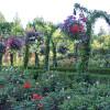 年間入園者100万人の花の名所:ブッチャート・ガーデン ~ カナダのビクトリア 1