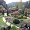 年間入園者100万人の花の名所:ブッチャート・ガーデン ~ カナダのビクトリア 6