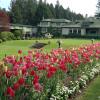 年間入園者100万人の花の名所:ブッチャート・ガーデン ~ カナダのビクトリア 8