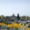 年間入園者100万人の花の名所:ブッチャート・ガーデン ~ カナダのビクトリア 10