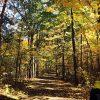 ミシガン州 の ステートパーク ① www.michigandnr.com  7